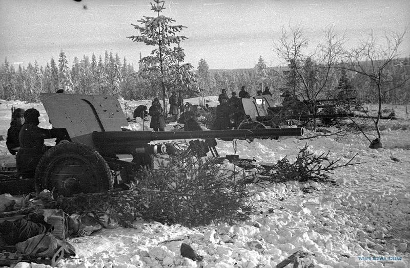 Рядом с городом Сестрорецком проходила линия обороны советских войск